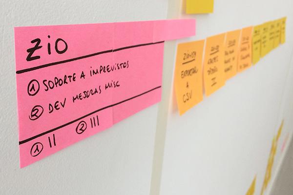 Panel desarrollo ZIO